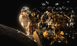 Falke mit dem offenen Schnabel, abstraktes Tierkonzept lizenzfreie abbildung