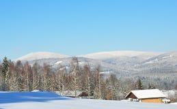 Falkenstein在冬天 免版税图库摄影