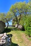 Falkenstein城堡废墟,南奥地利 库存图片