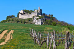 Falkenstein城堡废墟,南奥地利 免版税库存图片