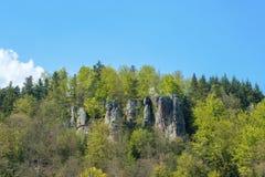 Falkenstein岩石的看法在巴德黑雷纳尔布 免版税图库摄影