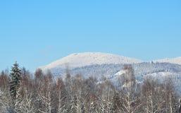 Falkenstein in winter Stock Photography