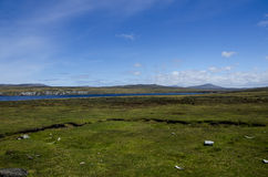 FALKLAND ISLANDS Royalty Free Stock Photo