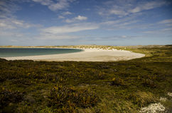 FALKLAND ISLANDS BEACH Stock Photos