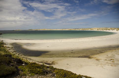 FALKLAND ISLANDS BEACH Stock Photography