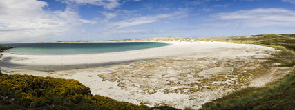 FALKLAND ISLANDS BEACH PANORAMA Stock Photography