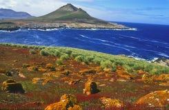 Falkland Islands jason kyrktorn Arkivbild
