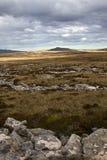 Falkland Islands Landscape Imagen de archivo libre de regalías