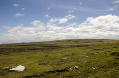 FALKLAND ISLANDS PASTURES Stock Photo