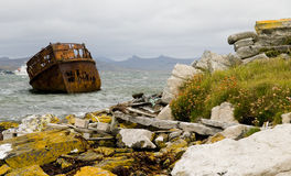 Falkland Islands Shipwreck and Coastline Royalty Free Stock Images
