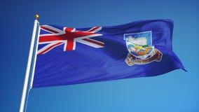 Falkland Islands-vlag in langzame motie voorzag foutloos met alpha- van een lus stock video