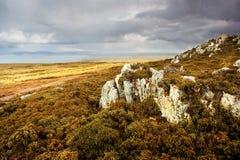 Falkland Landscape Royalty Free Stock Photos