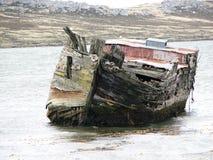 Falkland Shipwreck Royaltyfri Fotografi