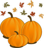 Fall Stock Images