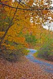 Fall. A shot of a country road in the fall Stock Image