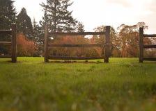fall Royaltyfri Foto