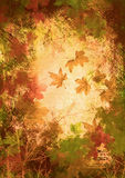 Fall. Dramatic fall of the leaves, background royalty free illustration