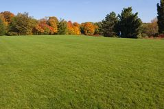 Fall. Green grass and colorful trees in one of Toronto park Stock Images