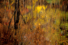 Fall Abstract Lake. Multi-color reflections in Lake Stock Photos