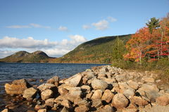 Fall in Acadia Stockbild