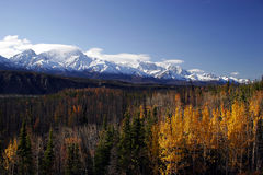 Fall in Alaska royalty free stock image