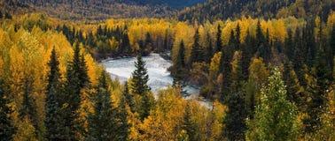 Fall in Alaska Royalty Free Stock Photos