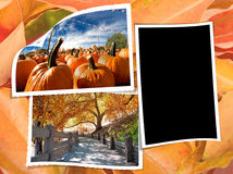 Fall album page Stock Image