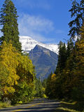 Fall Along Going to the Sun Road. This image of the highway and fall colors with the mountains and snow in the background was taken in Glacier National Park Royalty Free Stock Photos