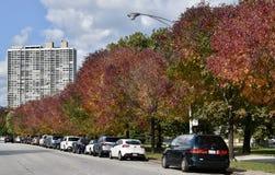 Fall along Lakeshore Drive West Stock Photos
