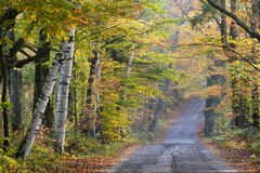 Fall along Sugar Hill Road. Autumn scenery along road in the Sugar Hill area of New Hampshire Stock Photo