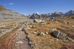 Fall in the Alps: walking long a path in Ahrntal, Italy Stock Photography