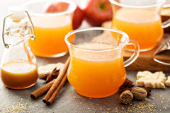Fall apple cider with warm spices. Cinnamon and nutmeg Royalty Free Stock Photo