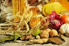 Fall arrangement Royalty Free Stock Image