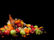 Fall arrangement of in a cornucopia royalty free stock photo