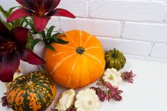 Fall arrangement with red lily and pumpkins royalty free stock photography