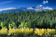 Fall Aspens and Long's Peak Stock Photography