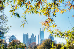 Fall in Atlanta. At Piedmont Park with Blue Sky and Trees Stock Photography