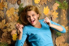 Fall atmosphere attributes. Woman pretty lady enjoy season hold autumn dry leaves. Girl blonde lay on wooden background. With orange leaves top view. Fall and stock images