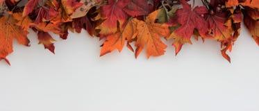 Fall or Autumn Border Horizontal Royalty Free Stock Images
