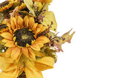 Fall and Autumn Colored Flower Arrangment Stock Photo
