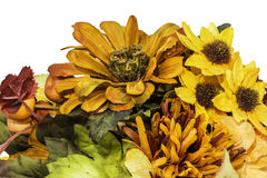 Fall and Autumn Colored Flower Arrangment Royalty Free Stock Photo