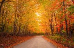 Free Fall Autumn Colors Foliage New England Stock Image - 196761621