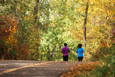 Runners on fall trail through woods. Female runners on rural road through forest with fall colors stock image