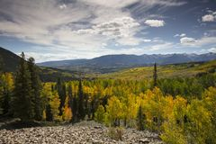 Autumn Fall colors and Aspen groves in Ohio Pass near Crested Butte Colorado Foliage of aspens turn yellow and orange. Autumn Fall colors and Aspen groves in Royalty Free Stock Photos