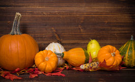 Fall / Autumn deocorations. Thanksgiving theme Stock Images