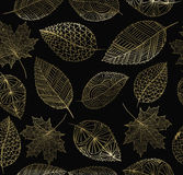 Fall autumn gold leaf concept seamless pattern Royalty Free Stock Image