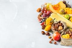 Fall autumn harvest background with pumpkin apple chestnut corn Stock Photo