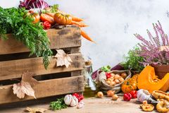 Fall autumn decorative festive thanksgiving background with vegetables Stock Images