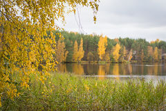 Fall autumn lake in the forest Stock Images