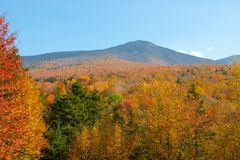 Fall Autumn Mountain Hills Stock Image